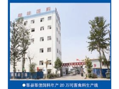 Xin Jia 300,000 tons of feed livestock and poultry feed line